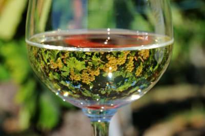 1367505514-bicchiere-fav-grappoli