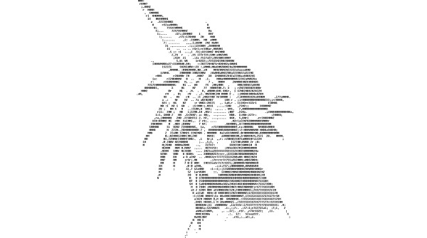 1399655279__0008_Small-ascii-art-600x335