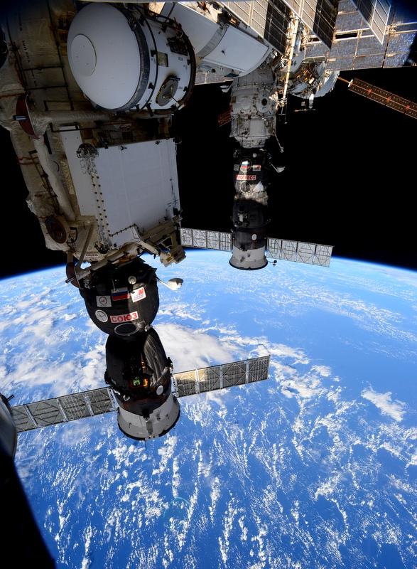AstroSamantha_2014-nov-25