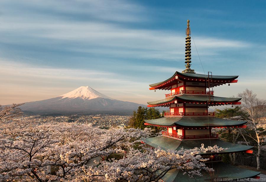 The Harmony of Japan || 大和の魂